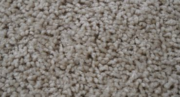 Carpet flooring concord for Mohawk flooring distributors